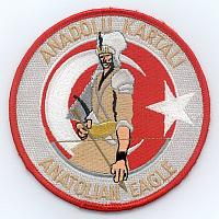 Anatolian Eagle patches